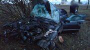 Под Николаевом разбился насмерть патрульный на BMW — «ДТП»